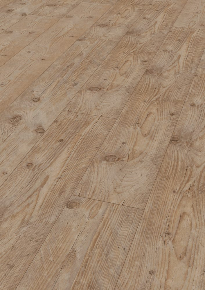 charton-pine