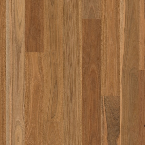 Matt Brushed Spotted Gum